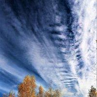 Теплая осень :: Роман Воронцов
