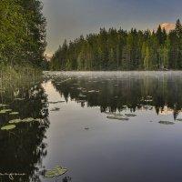 утро на озере :: юрий карпов