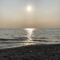 Чёрное море. Сочи. :: Светлана Ященко