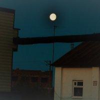Ночь,улица,луна... :: Лариса Красноперова