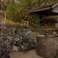 Колодец и цветы. :: Лариса Красноперова