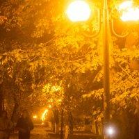 Осенний вечер :: Михаил Почкалов-Семченков