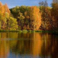 Осенняя живопись... :: Ольга Русанова (olg-rusanowa2010)