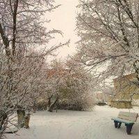Вот и Зима пришла... :: Милла Корн