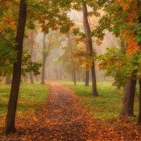 По осеннему парку :: Валерий Горбунов