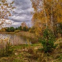 Дыхание осени :: Андрей Дворников