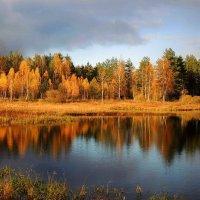 Отражение осени :: Павлова Татьяна Павлова
