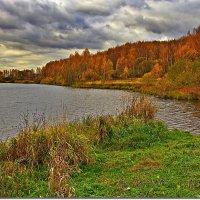 Уж небо осенью дышало :: Вячеслав Минаев
