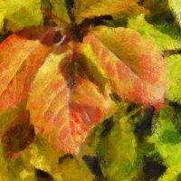 Шуршанье листьев в старом парке.. :: Tatiana Markova