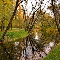 осень в парке :: Валентина Папилова