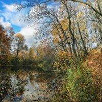 Золотая осень. :: Svetlana Sneg
