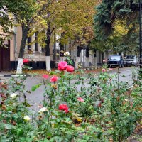 Осень в Шахтах :: Владимир Болдырев
