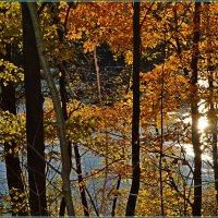 Осень, солнце, река... :: Vladimir Semenchukov