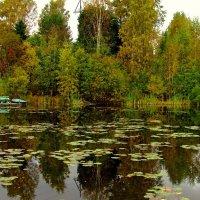 Озеро :: Сергей Карачин