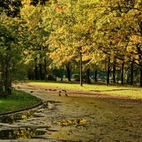 Поворот в осень :: Владимир Гилясев