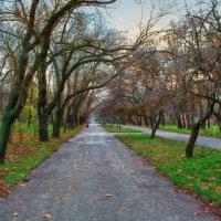 Осень в парке. :: Вахтанг Хантадзе