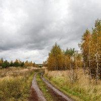 Октябрь :: Андрей Гр