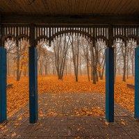 За крыльцом опали листья :: Валерий Горбунов