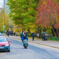 Москва, пер. Расковой :: Игорь Герман