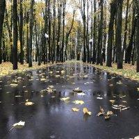 Осень :: Лето Теплое