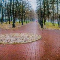 Первый снег :: Георгий Морозов