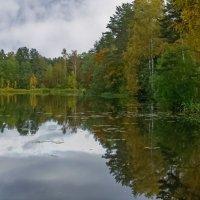 Осень на озере Вероярве :: Сергей Карачин