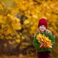 Букет кленовых листьв :: Татьяна Прокошева