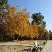 Осень-золотистая пора.... :: LORRA ***
