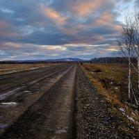 """""""Дороги,дороги,лесами,поселками,вдоль них тополя и поля.."""" :: Алексей Мезенцев"""