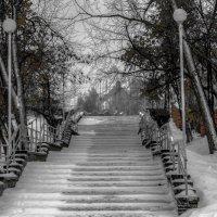 лестница :: Юлия Денискина