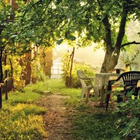 Утром в саду. :: Елена Kазак