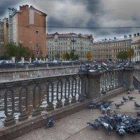 Осень в Питере :: Алексей Корнеев