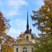 Знаменская церковь :: Светлана