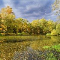 Радужный пруд :: Наталья Лакомова