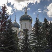 Купола Сергиевой Лавры :: Сергей Цветков