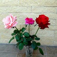 Букет осенних роз... :: Тамара (st.tamara)
