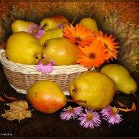 Поспели груши в октябре :: °•●Елена●•° ♀