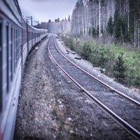 Путь дорога :: Никита Захаров