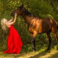 Фотосессия на лошади :: Ольга Петруша