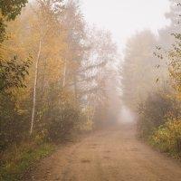 Осенним утром. :: Сергей Щелкунов