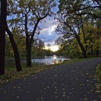 Вечер в парке. :: Senior Веселков Петр