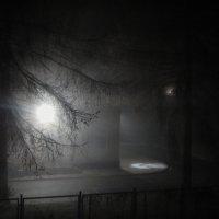 Ночной туман. :: Елена Михайлова .