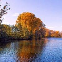 Осень у озера. :: Надежда