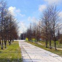 Утро в парке . :: Мила Бовкун