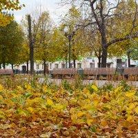 Цветной бульвар - листвы пожар! :: Татьяна Помогалова