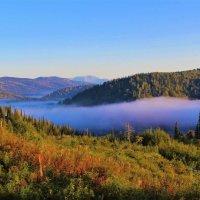 Шлейф туманный над рекой :: Сергей Чиняев