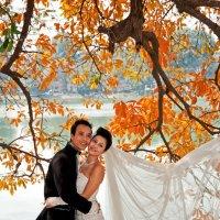 Свадьба :: Alexander Dementev