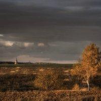 Осенний контраст . :: Va-Dim ...