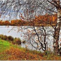 Хмурая осень :: Вячеслав Минаев