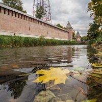 Осеннее... :: Олег Козлов